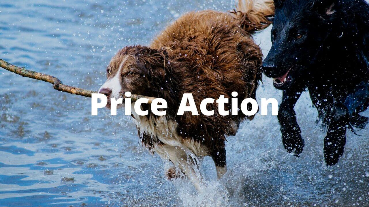 What is price action