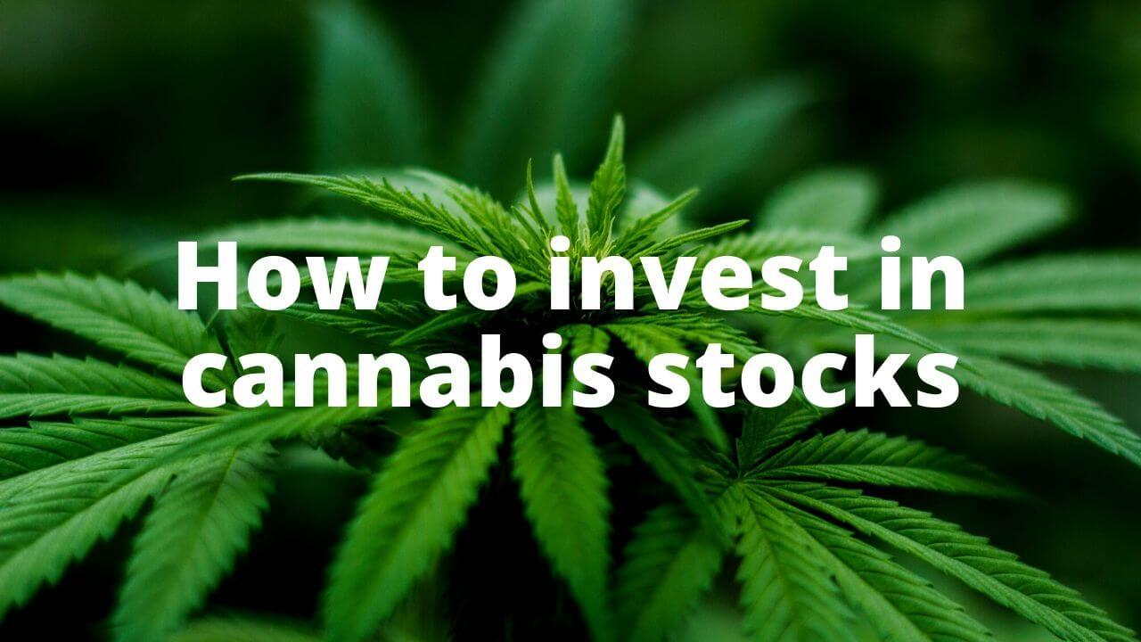 how-to-invest-in-marijuana-stocks